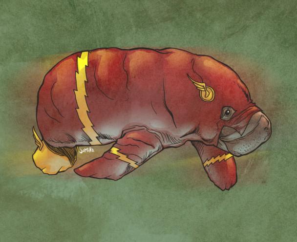 flash manatí