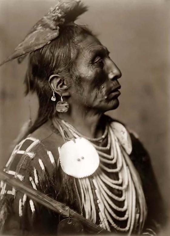 indios cuervo retrato