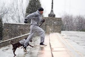 Rocky Balboa entrenamiento