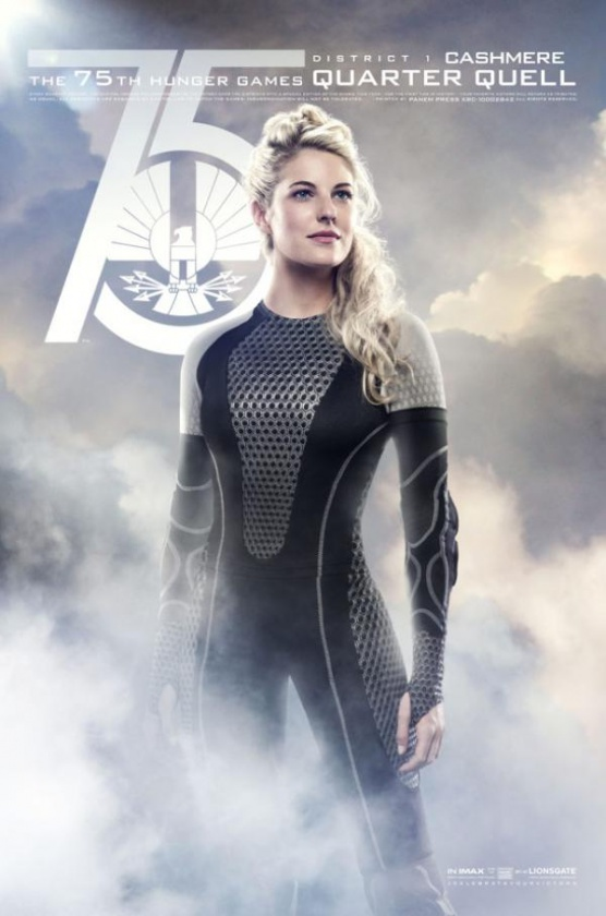 catching fire poster 6