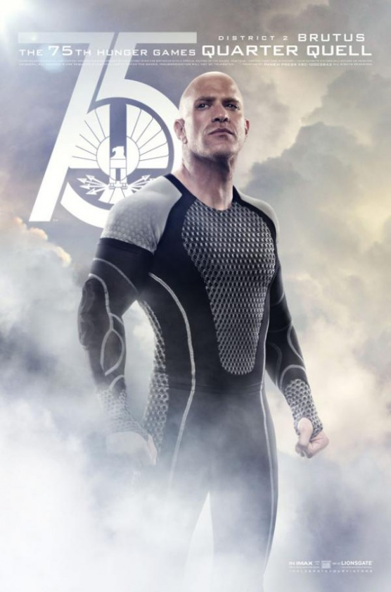 catching fire poster 8