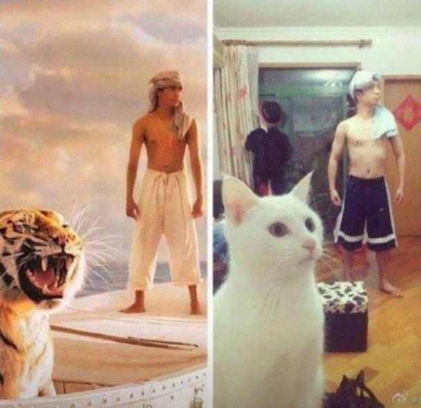 vida-de-pi-cosplay