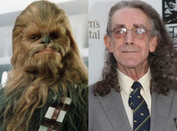 Chewbacca - Peter Mayhew