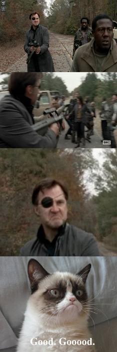 el-governador-los-mata-a-todos-y-a-grumpy-cat-le-gusta