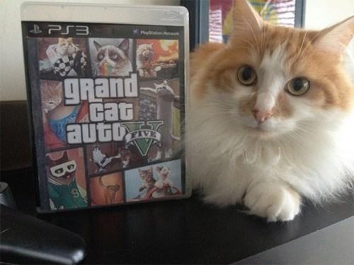 grand-cat-auto-v