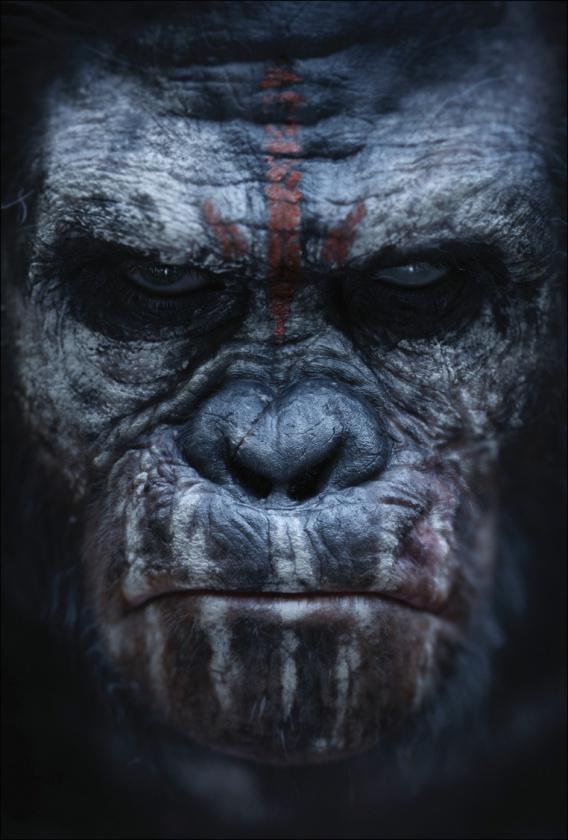 Póster 2 El amanecer del planeta de los simios