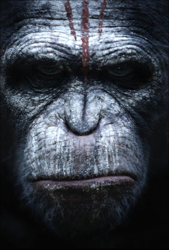 Póster 3 El amanecer del planeta de los simios