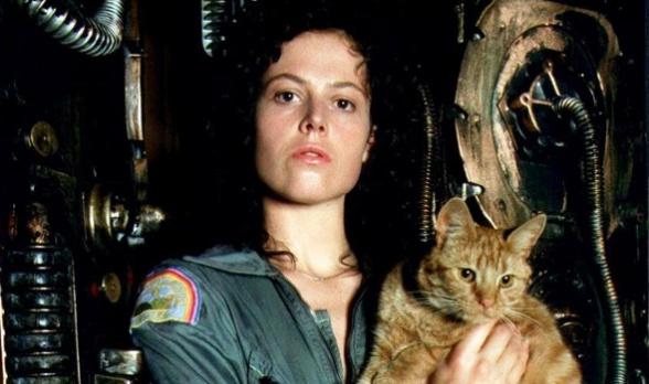 Alien Ripley 01