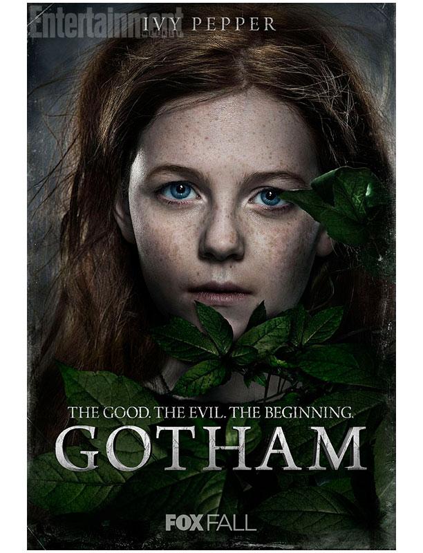 Gotham Ivy