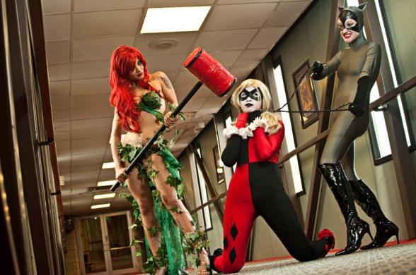 cosplay catwoman harley hiedra