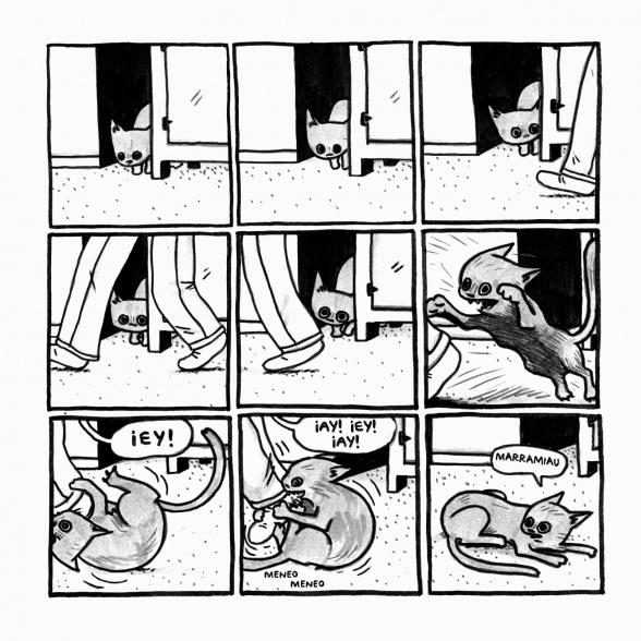 Gato saliendo de una Bolsa -Tripa- 9