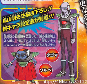 dragon-ball-z-sorbet-y-tagoma
