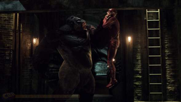 Gorilla Grodd - The Flash