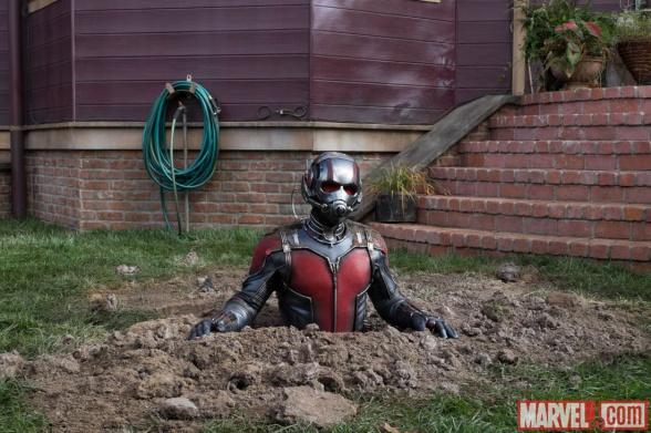Ant Man 04