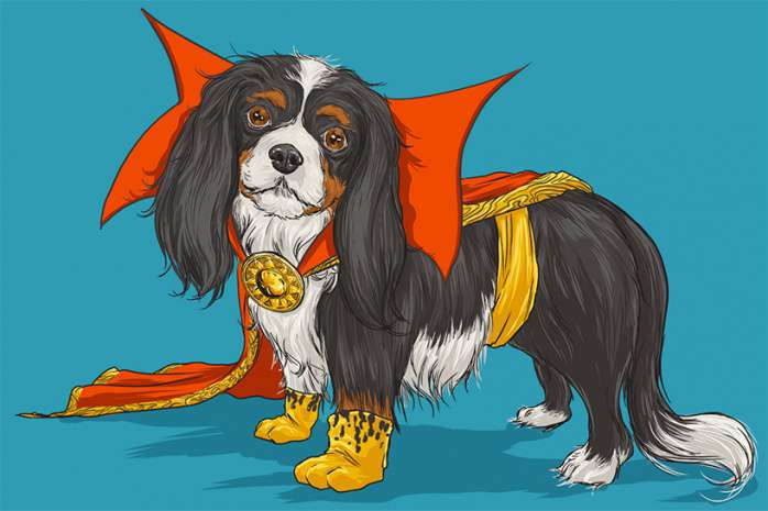 Perros Marvel 15