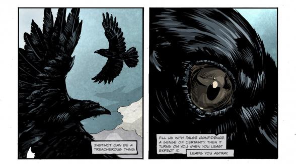 Raven eye