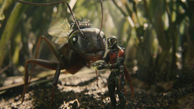Ant-Man - Anthony