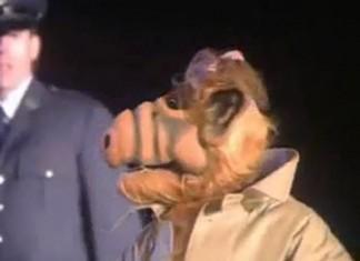 Final Alf