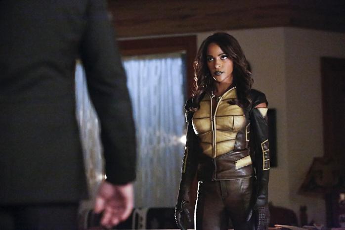 Vixen en Arrow (4)