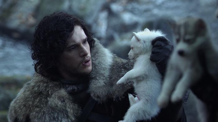 Fantasma Jon Nieve Juego de Tronos