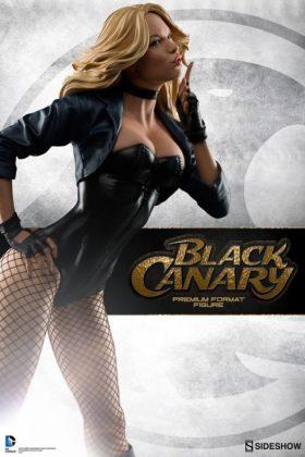 Sideshow Collectibles Canario Negro (2)