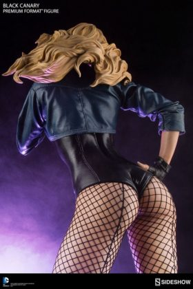 Sideshow Collectibles Canario Negro (3)