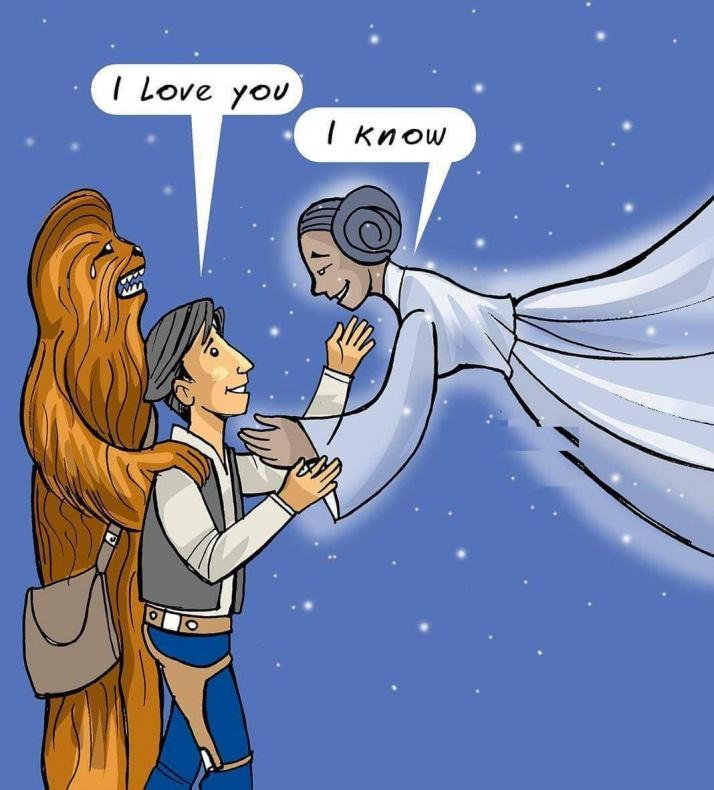 Leia y Han
