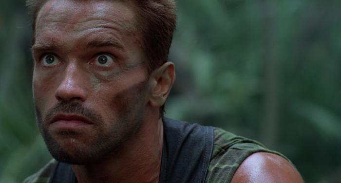 Arnold 1
