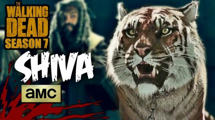 The Walking Dead Shiva 001