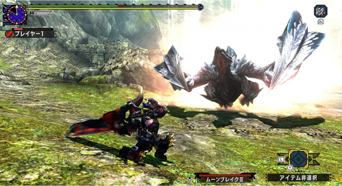 Monster Hunter XX 1