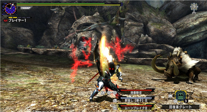 Monster Hunter XX 5