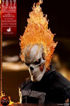 Ghost Rider Shield 10