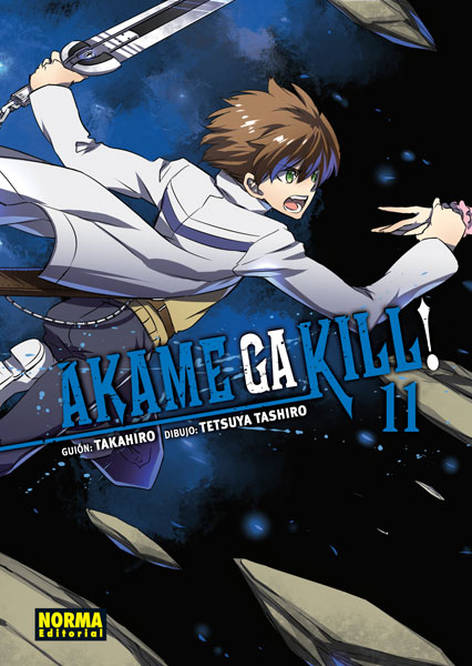 Akame ga kill 11