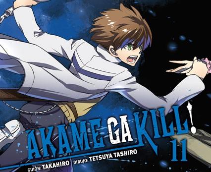 Akame ga kill 11ID