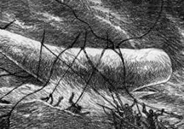 Moby Dick Imagen