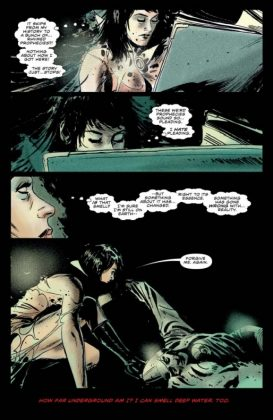 Vampirella Vol. 1 Forbidden Fruit (17)