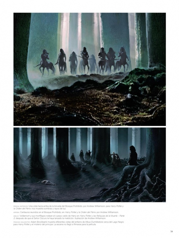 Arte del bosque de Harry Potter