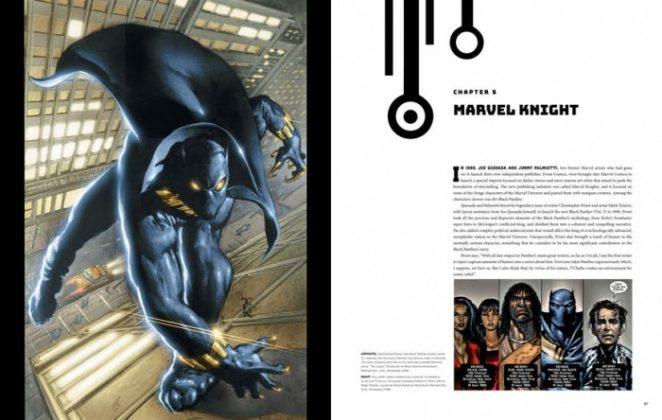 black panther illustrated history 1