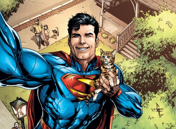 superman gato árbol
