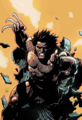 Return Wolverine