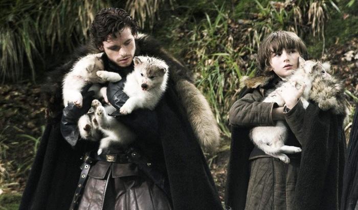 Los Stark y sus lobos huargo en Juego de Tronos