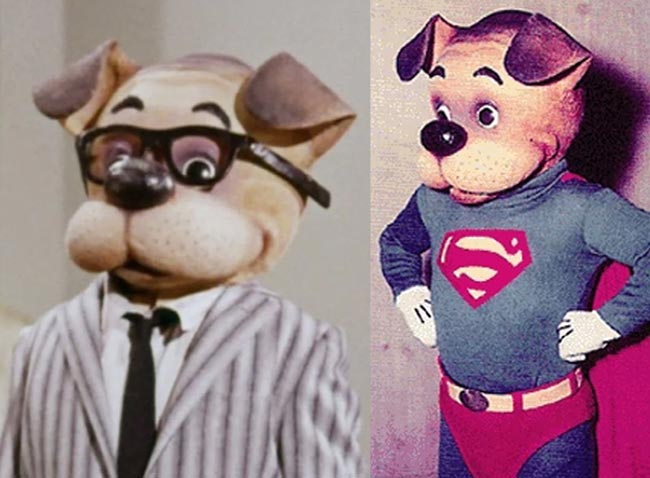 The Adventures of Superpup 2