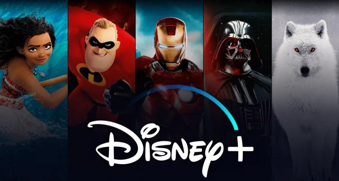 Error-renovar-Disney