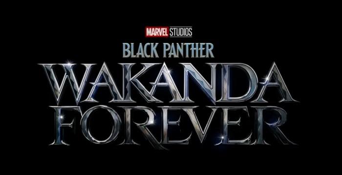 Black Panther Wakanda Forever Disney Marvel